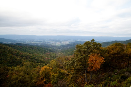 virginia: Appalachian Mountians Autumn Fall Landscape