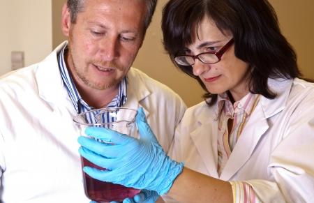 dissolution: Scientists perform dissolution test