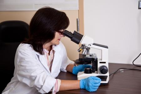 laboratory labware: Scientist works with microscope