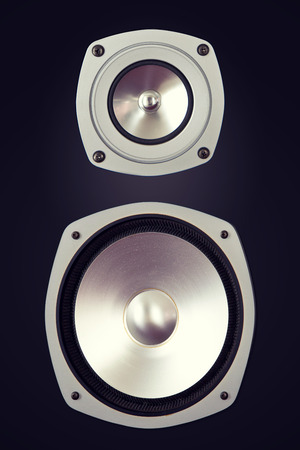 loud speaker: Two Way Big Audio Stereo Loud Speaker Closeup