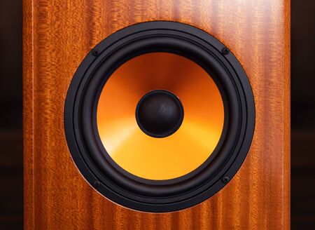 Modern Audio Subwoofer Orange Speaker built in exotic wooden cabinet Front Фото со стока