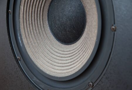 Huge Bass Vintage Loudspeaker Driver Cone Passive Radiator Macro with Screws