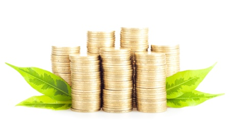 cuenta bancaria: Pila de monedas de oro con hojas verdes aislados en el crecimiento de fondo blanco Concepto de Negocios