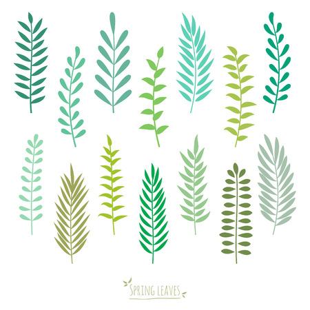 Set of spring green leaves. Elements for design. Spring background. Vector illustration. Vector