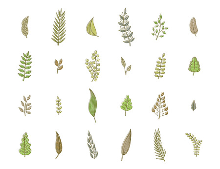 soft colors: Set of spring leaves, soft colors. Collection of nature elements for design. Ecology icons. Vector illustration. Illustration