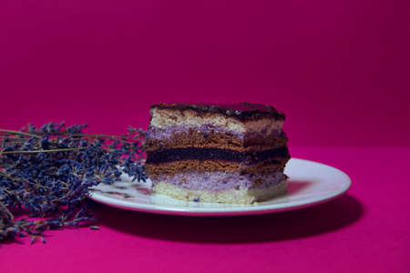 A piece of cake with cream, lavender and berries is served on a white plate on a bright colored background. decorated with dried lavender flowers.Bright advertising of premium confectionery products
