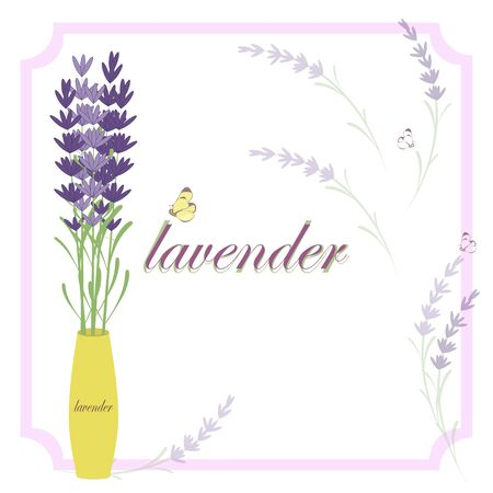Lavender layout