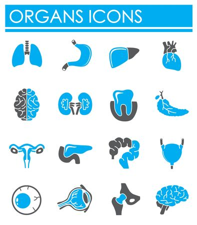 Human organs related icons set on background for graphic and web design. Creative illustration concept symbol for web or mobile app.