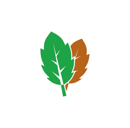 Leaf related icon on background for graphic and web design. Creative illustration concept symbol for web or mobile app