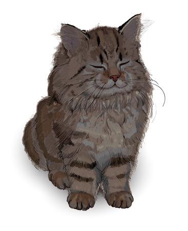 happy kitten drawing Vector