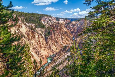 View of Grand Canyon of Yellowstone. Yellowstone National Park. Wyoming. USA