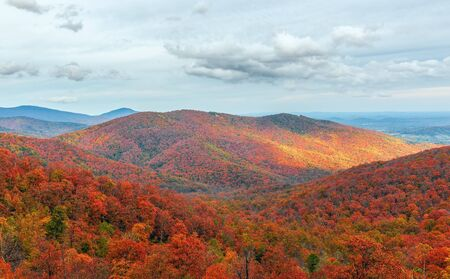 Colorful autumn view of Blue Ridge mountain ridges from Skyline Drive in Shenandoah National Park. Virginia. USA