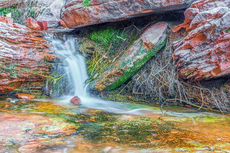 Der Emerald Pools-Pfad. Wasserfall. Zion-Nationalpark. Utah. Vereinigte Staaten von Amerika Standard-Bild