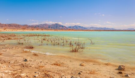 Emerald water of Cristal Reservoir at Ash Meadows National Refuge. Amargosa Valley. Nye County. Nevada. USA Stock fotó