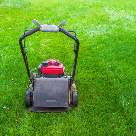 Gasoline lawn mower on green grass. Backyard lawn care equipment. Close up view