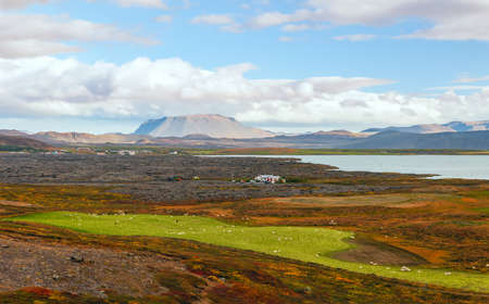 Rural landscape near Lake Myvatn. Tabletop Mountain is in the background. Iceland 版權商用圖片