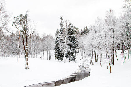 rive: A river with ducks in winter Park Stock Photo