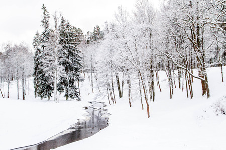 coldly: A river with ducks in winter Park Stock Photo