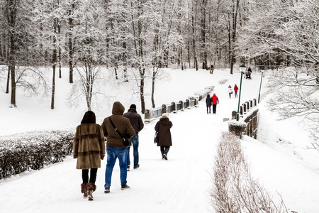 coldly: Lomonosov, St. Petersburg, Russia-February 8, 2015. People walk in winter Park