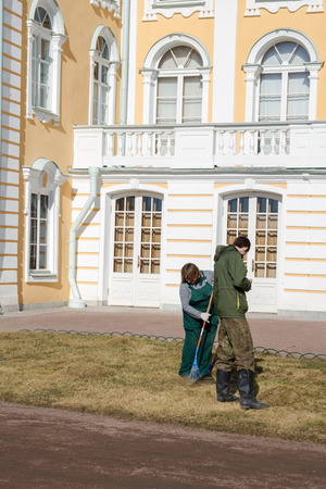 petrodvorets: Russia, St. Petersburg, city of Petrodvorets, March 16, 2015. Employees of the Park near the Grand Palace clean lawn