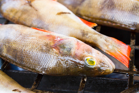 raw fish: Fresh raw fish before cooking in a smokehouse Stock Photo
