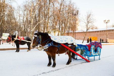 accessories horse: the city of Veliky Novgorod, Russia, 5 January, 2016. Horses drawn sleigh and carriage in winter