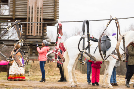reins: Reins for horses are hanging on the rope