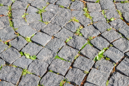 The road is paved with stones