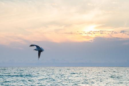 Beautiful sunset on the black sea