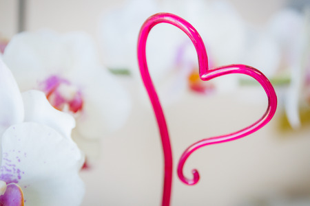 Pink plastic heart for decoration