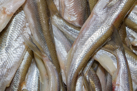 Raw brushed smelt fish lies on the plate