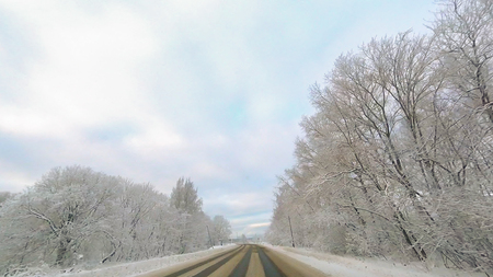 Country road in winter along the forest with white snow trees 스톡 콘텐츠