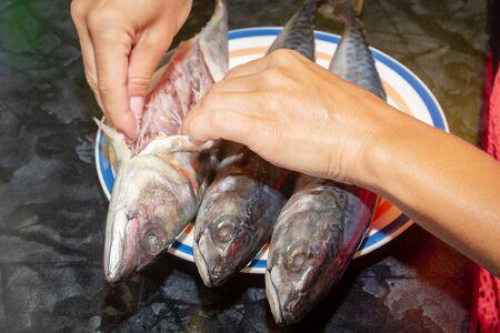 Marinating raw fish mackerel for baking on the grill