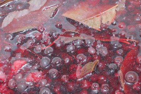 Preparation of syrup from chokeberry and cherry leaf