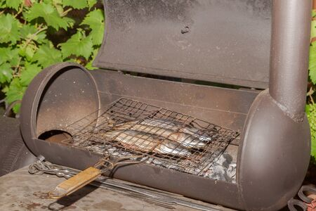 Grilled smoked Golden mackerel fish outside late at night