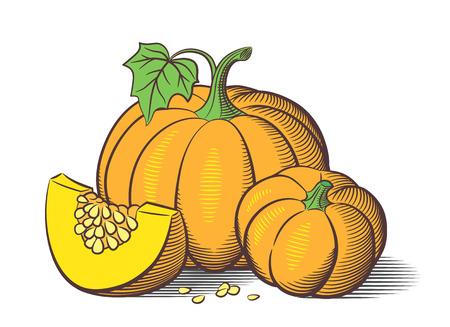 Stylized image of pumpkins. Big pumpkin, small pumpkin and pumkin slice with seeds Illustration