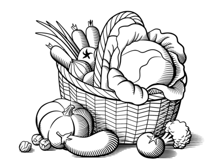 Basket with vegetables. Stylized black and white vector illustration. Cabbage, pumpkin, eggplant, tomatoes, onion, carrots, broccoli, brussels sprouts