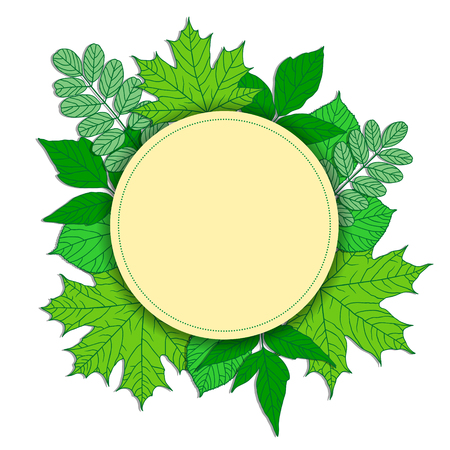 Round frame with green leaves. Maple, acacia, linden and acer. Vector frame with place for your text
