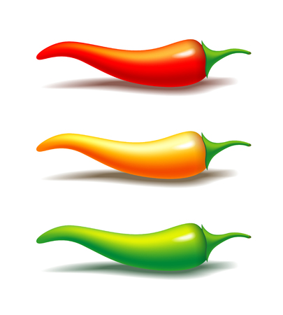 Vector semi realistic illustration of hot chili pepper. Red, yellow and green spice. Isolated on white Çizim