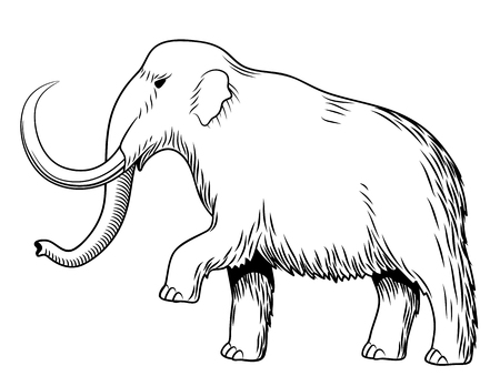 Mammoth. Black and white stylized vector illustration