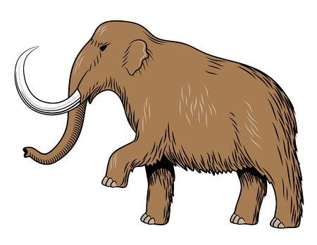 Stylized colored vector illustration of mammoth. Isolated on white background