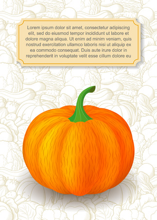 Card design template. Image of pumpkin in semi-realistic style on background with outline vegetables. Vector illustration on agricultural theme