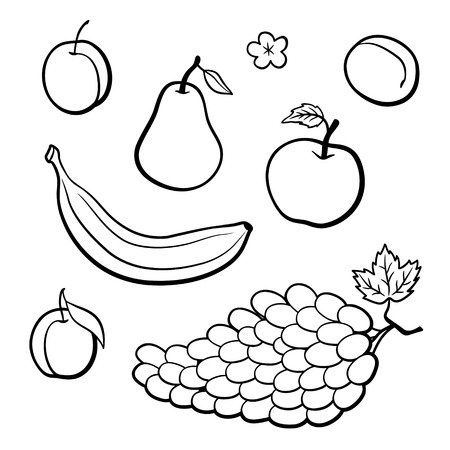 Set of outline vector fruits. Apple, banana, pear, plum, apricot and grapes. Black and white vector illustration; Çizim