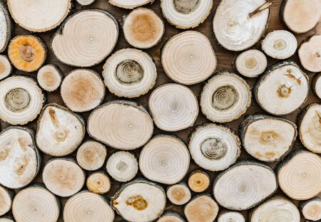 background sawn tree trunks of different sizes and shapes