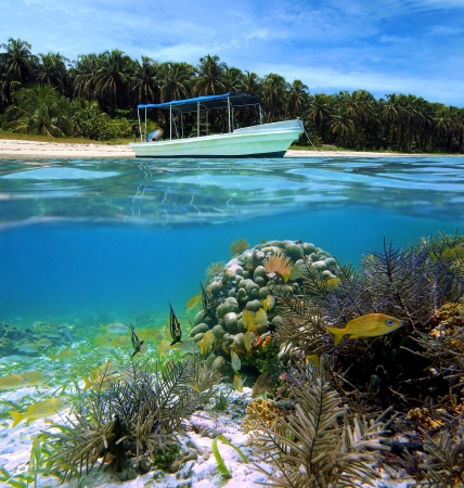 Surface and underwater view with boat, beautiful beach, corals and tropical fish, Caribbean sea, Costa Rica