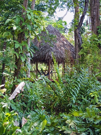 Typical hut in the jungle of Costa Rica photo