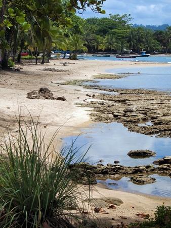 viejo: Beach in Puerto Viejo , caribbean coast, Costa Rica