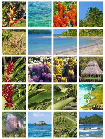 Tropical collage, caribbean coast in central america photo