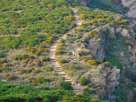 vermilion coast: Mediterranean trail with two people walking, Vermilion coast, Languedoc-Roussillon, France