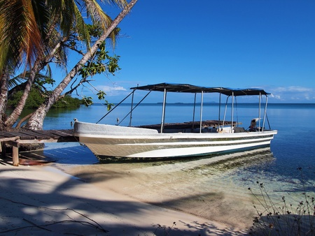 costa rica: Tropical beach with a boat at dock and coconuts trees shades, Bocas del Toro, caribbean, Panama